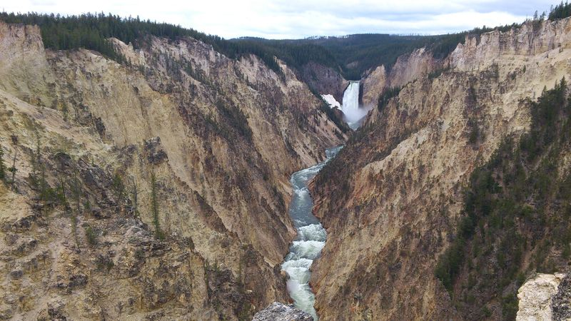 Le grand Canyon de Yellowstone River